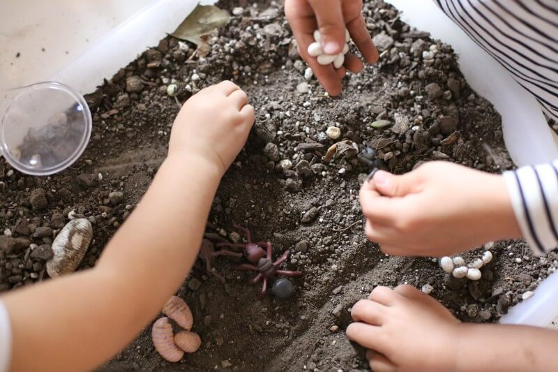 Preschoolers learn important science concepts explore natural objects